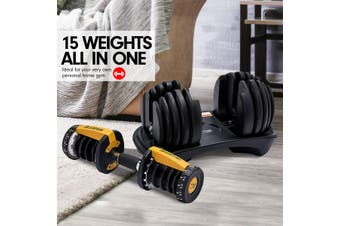 2x Powertrain 24kg Adjustable Dumbbells w/ Stand 10433 Bench Gold