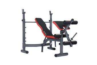 Powertrain Home Gym Bench Press Incline Decline Preachers Curl Exercise
