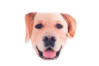 Decorative Plush Cushion - Labrador