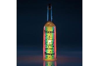 Iridescent Wishlight Bottle - Meowgical Friend