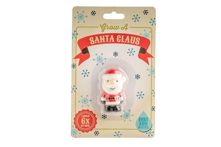 Christmas Grow 'em - Santa