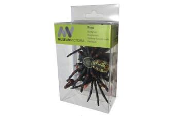Animals of Australia Box of 5 Bugs