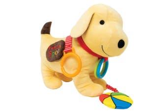 Spot the Dog Spot Activity Toy