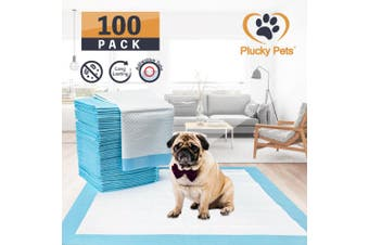 100 Pack Puppy Pet Dog Indoor Cat Toilet Training Pads(BLUE)