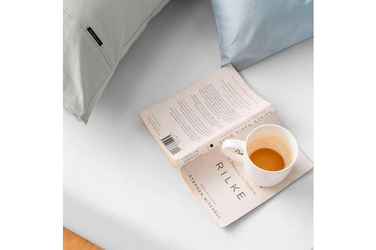 Linen House Augusta 500 Thread Count Cotton Fitted Sheet - Long Single / Magnet