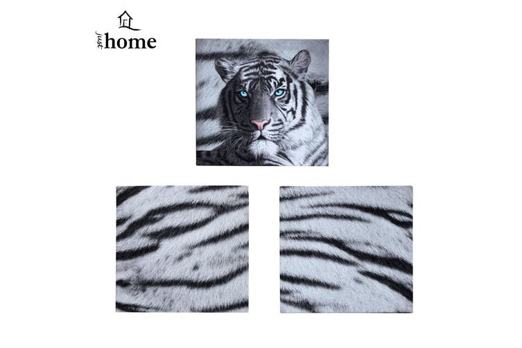 Set of 3 Printed Blue Eyes Stripes Tiger Wall Canvas by Just Home