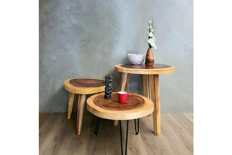 Round Raintree Wood Live Edge Coffee Table 65cm Diameter 45cm Tall Matt Blatt