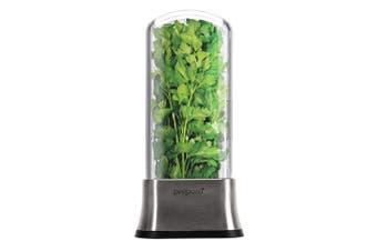 Prepare Stainless Steel Herb Savor Herbs Spices Kitchen Saver Savour Storage