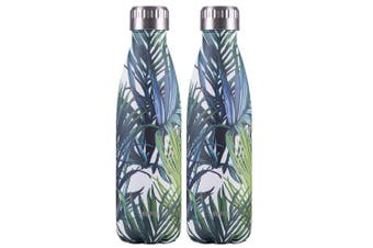 2x Avanti 500ml Water Vacuum Thermo Bottle 2 Wall Stainless Steel Cold Drink PM
