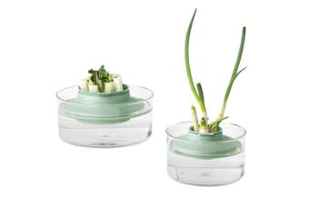 Brabantia Herbs & Vegetables Regrow Kit Planting Container plant Storage Pot