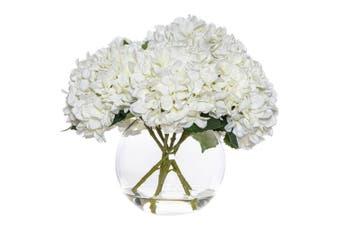 Rouge 40cm Glass Sphere Vase w  Artificial Hydrangea-Phoebe Faux Flower Clear WH
