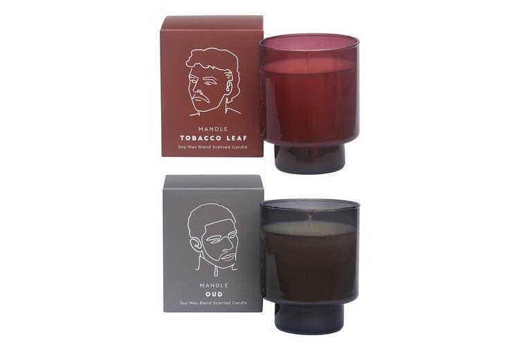 2PK David & Waddel Soy Wax Blend Scented Fragrance Candle Jar Oud & Tobacco Leaf