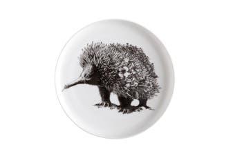Maxwell & Williams 11.5cm Marini Ferlazzo Snacks Food Dish Plate Saucer Echidna