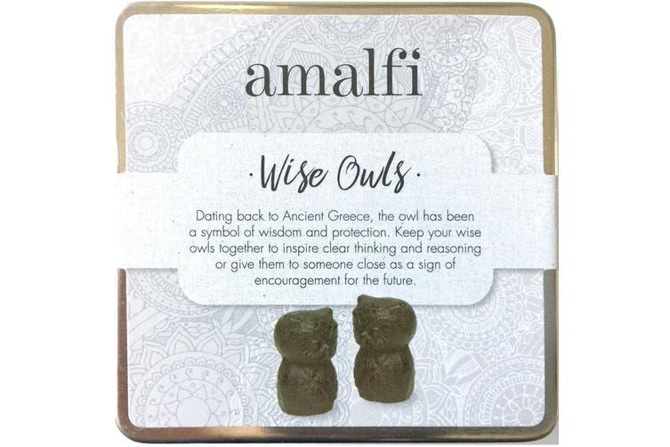 Amalfi Wise Owls Set of 2 Cast Iron Home Decor Gifts Figurines Statue Decor