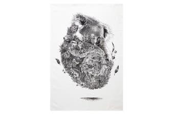 Maxwell & Williams 50cmx70cm Marini Ferlazzo Tea Towel Dish Cloth Koala White