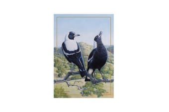Maxwell & Williams Birds Of Australia Cotton Tea Towel Kitchen Dish Cloth Magpie