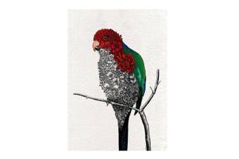 Maxwell & Williams Marini Ferlazzo 70cm Birds Tea Towel Cotton Cloth Parrot
