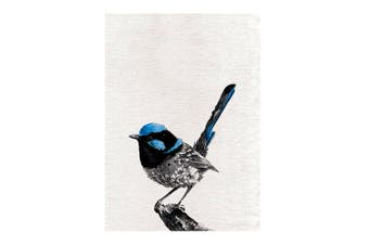 Maxwell & Williams Marini Ferlazzo 70cm Birds Tea Towel Cotton Cloth Fairy Wren