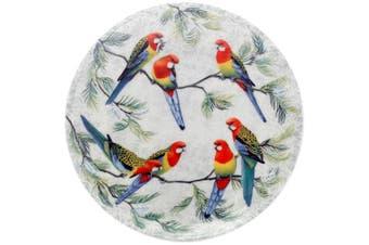 Maxwell & Williams Cashmere Birds of Australia Plate 20cm Eastern Rosellas