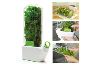 Prepara Large Herb Savor Basil Parsley Leaf Lettuce Spices Savour Storage Saver