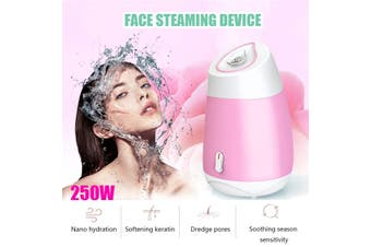 3 in 1 Nanometer-Ion Portable Face Steamer Thermal Sprayer Deep Clean Face Moisturizing Beauty Humidifier(pink)(Type B Facial Steamer)