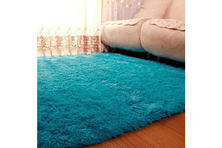 Fluffy Rug Anti Skid Shaggy Rugs Carpet Washable Living Room Bedroom Floor Mats Kogan Com