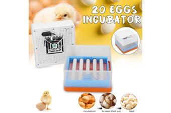 Newest Farm Hatchery Incubator Brooder Machine 4-20 Eggs Hatchers Cheap Price Chicken Automatic Eggs Incubator Bird Quail Brooder(Normal Version)