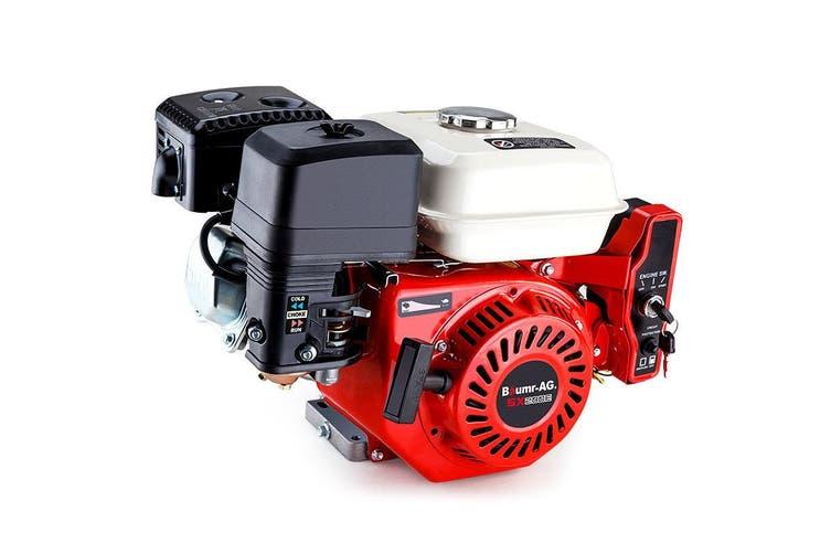 Baumr-AG 6.5HP Petrol Engine Stationary Motor OHV Horizontal Shaft Electric Start Recoil
