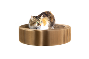 Cat Scratcher Collapsible Lounge, Round Scratching Board & Bed
