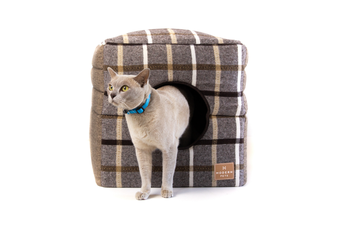Pet Cube Convertible Bed, Light Brown Check