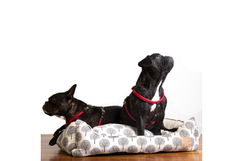 Dog Bolster Bed, Tree Print Ivory White - Large (75cm)