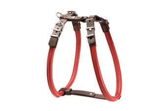 Hunter Calgary Elk Rolled Leather Dog Harness - Chili/Brown / 65 (Neck 46-49cm / Belly 60-65cm)
