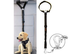 iBuddy Dog Seat Belt for Cars, Headrest Restraint with Locking Carabiner
