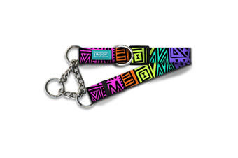 Woof Concept Martingale Dog Collar, Disco