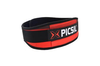 PicSil Weight Lifting Belt