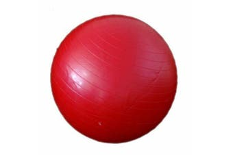 Gym Ball (55cm)