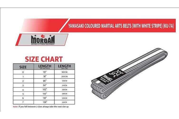 Yamasaki Coloured Martial Arts Belts - White Stripe - 2 / Black