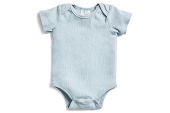 Ergopouch Short Sleeve Bodysuit Sterling 0.2 Tog 2 Y