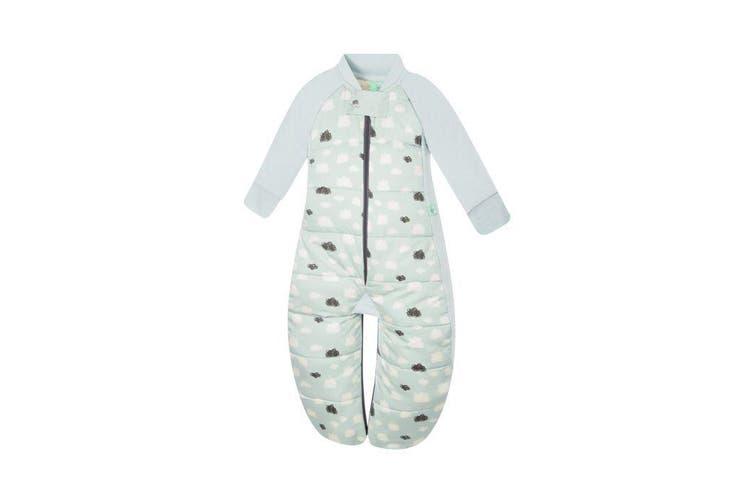 Ergopouch Sleep Suit Bag Heritage 2.5 Tog 8-24 M Mint Clouds