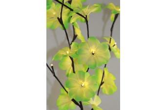 Green Frangipani Bunch Stem - fairy lights - 50cm high 20 bulbs/petals