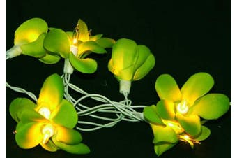 Green Frangipani LED Fairy Lights battery powered - party table centrepiece
