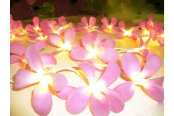 Soft Pink Frangipani's on a string of fairy lights - girls bedroom Decoration
