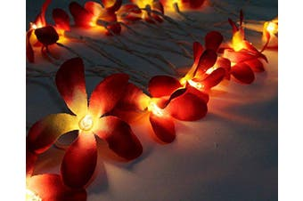 Deep Red Coloured Frangipani LED Fairy Lights on a battery pack