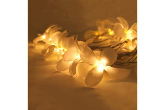 White Frangipani Fairy Lights on a 10 Metre Wire String - Wedding Party Decoration