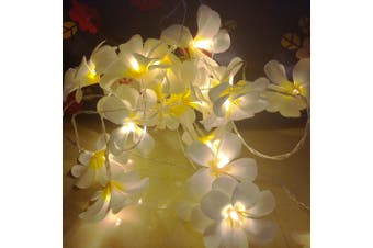 White Frangipani LED Fairy Lights battery powered - wedding table centrepiece
