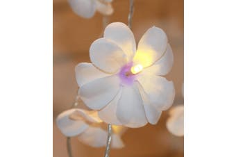 White n Purple Frangipani Fairy Lights on a 10 Metre Wire String - Wedding Party Decoration
