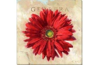 Bayport Gygi Stretched Canvas Wall Art Print RED GERBARA Small