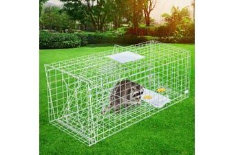 XXXL Large Animal Trap Cage Humane Live  Possum Fox Rat Cat Rabbit Hare Catch