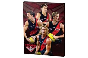 Essendon Bombers AFL Dyson Heppell, Joe Daniher, Darcy Parish, Zach Merrett Wall Canvas Sign