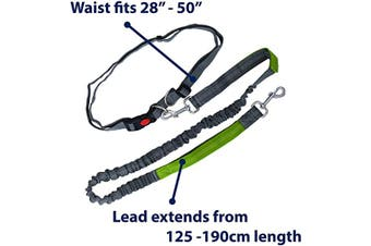 Zenify Dog Lead Waist Belt Leash for Running, Walking, Hiking, Canicross Length Extendable 125cm - 190cm (Grey Green)